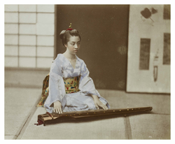 Young woman playing the koto