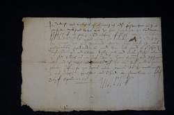 1557 order by Mary Queen of Scots relating to fleshers